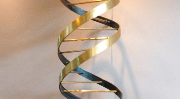 DNA: a viagem