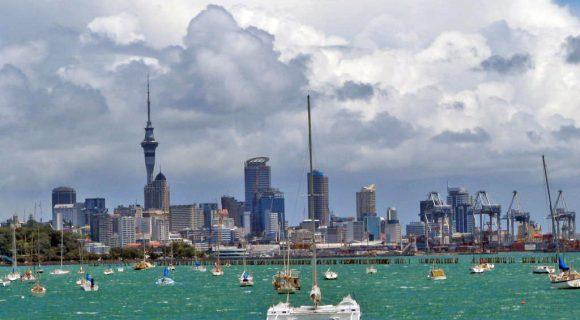 Kia ora: entre kiwis, samambaias e maoris