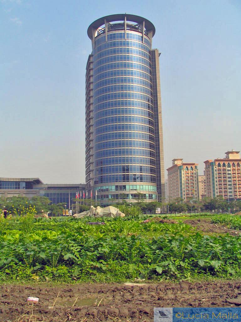 Horta em Taipei - Taiwan