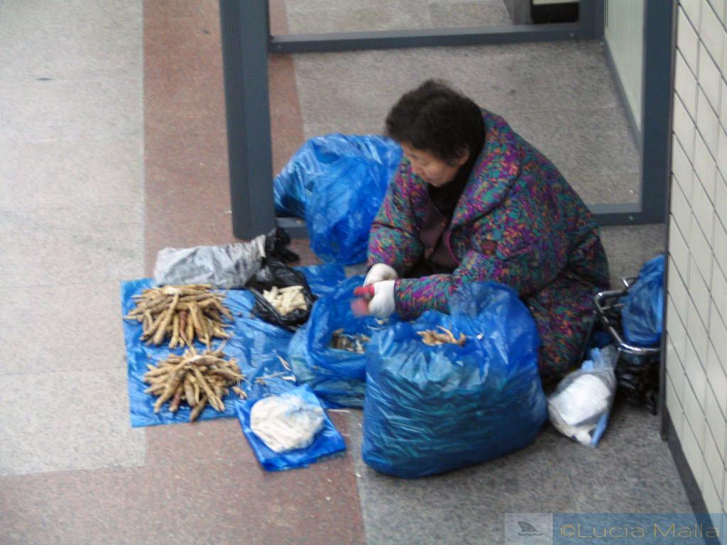 Vendedora de raízes medicinais - estação Sadang - metrô de Seul