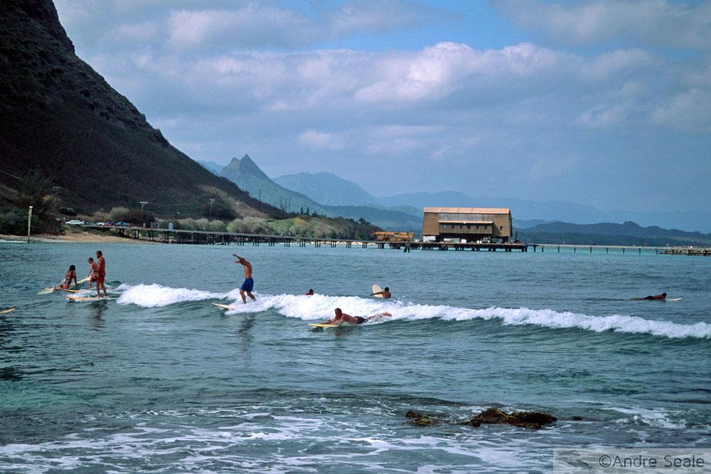Cockroach Beach - Oahu - Surfe no Havaí