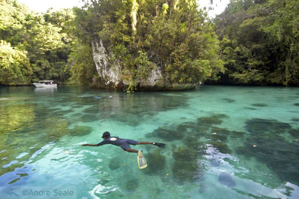 Por que Palau - mandarinfish lake