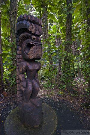 Arredores de Hilo: o Jardim Botânico