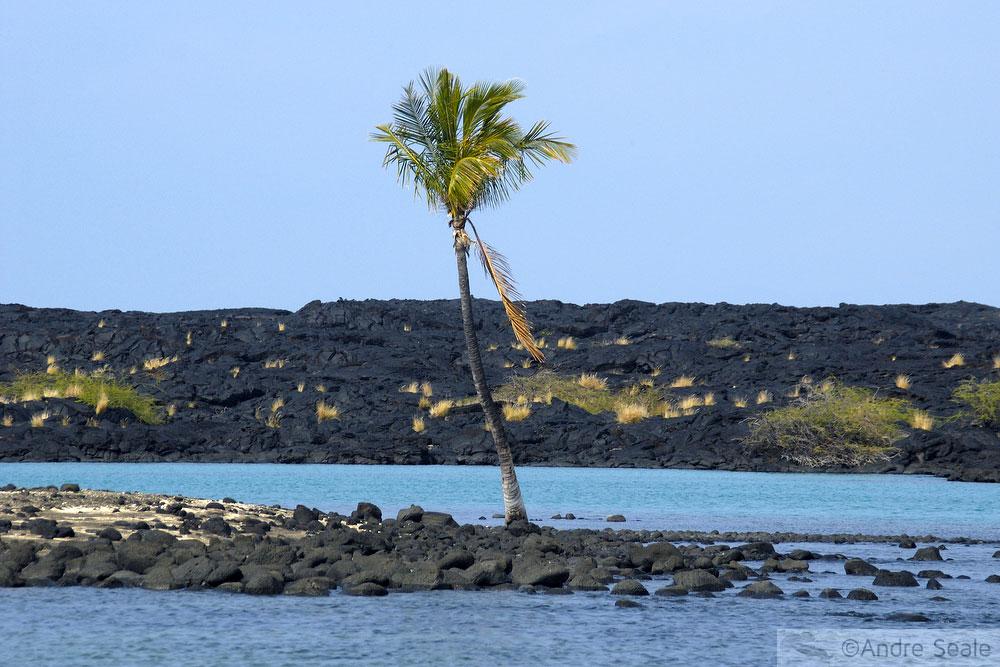 Praia de areia preta - Roteiro de visita a Kona