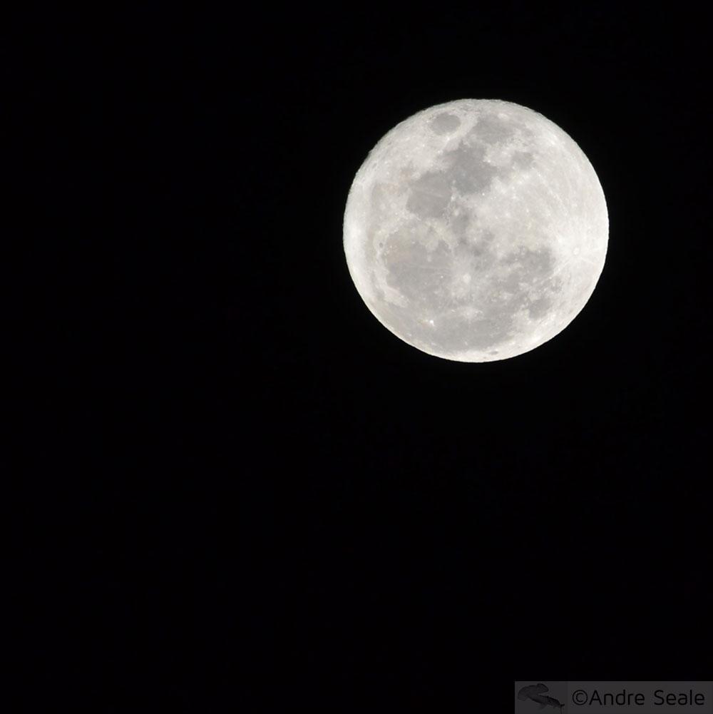 Malla na lua