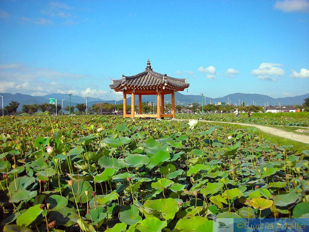 Pavilhão Silla em meio a um lago - Gyeong-ju - Coréia do Sul