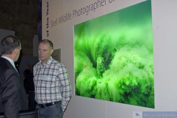 Göran e sua imagem vencedora de uma morsa