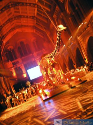 Hall do Dinossauro