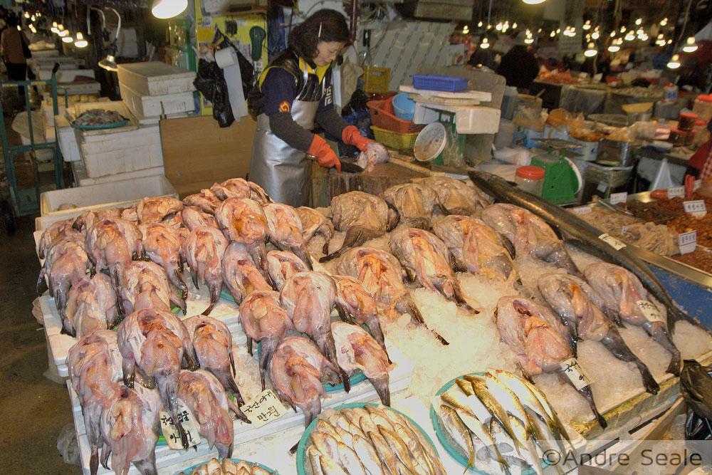 Rastelando o mar - peixe à venda no mercado