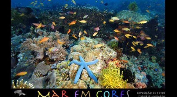 Mar em cores