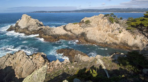 Parques estaduais americanos: Point Lobos