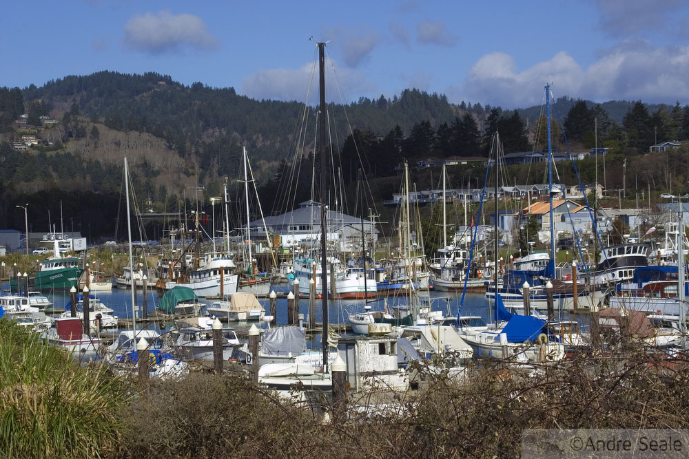 Costa do Oregon - Marina de Brookings