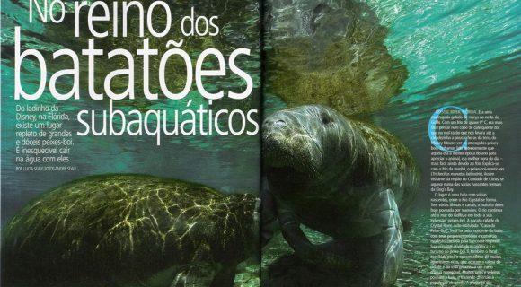 Na Mergulho com o peixe-boi