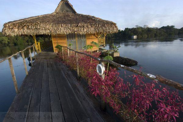 Em Mamirauá - Pousada Uacari