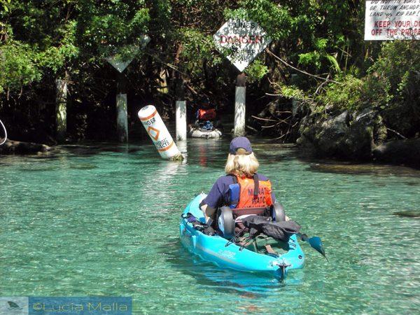 Guarda do peixe-boi na Flórida