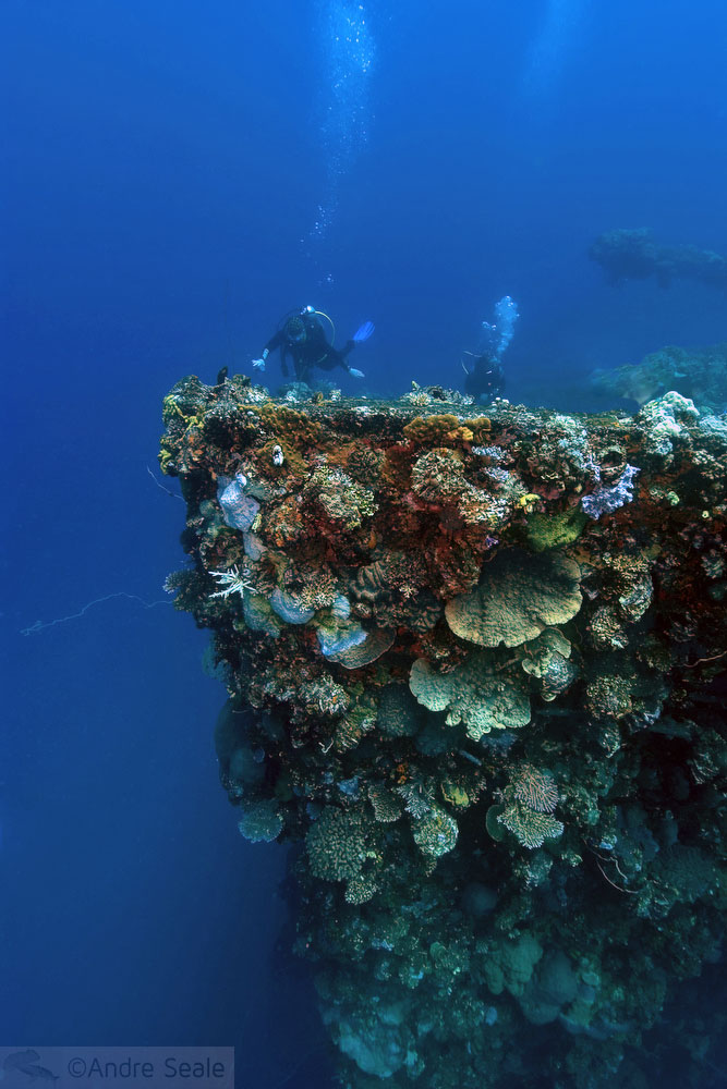 Naufrágios do Truk Lagoon - Fujikawa Maru