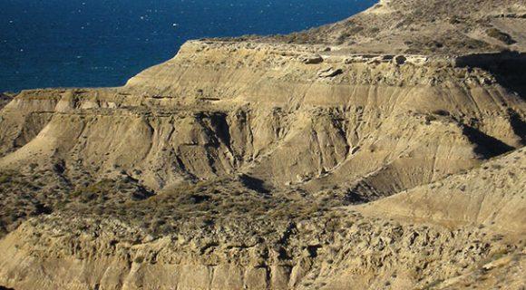 Resposta do desafio malla: Puerto Pirámides, Argentina