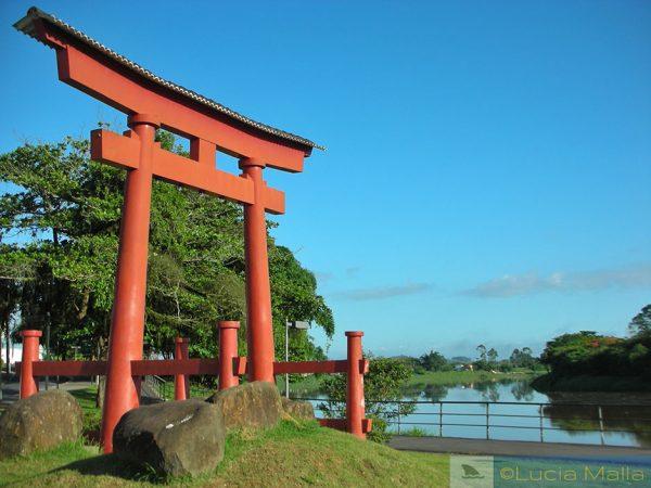 Desafio Malla - torii