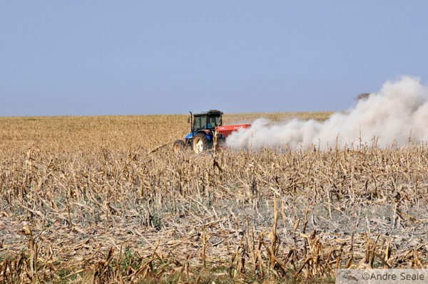 Biodiversidade e Agricultura