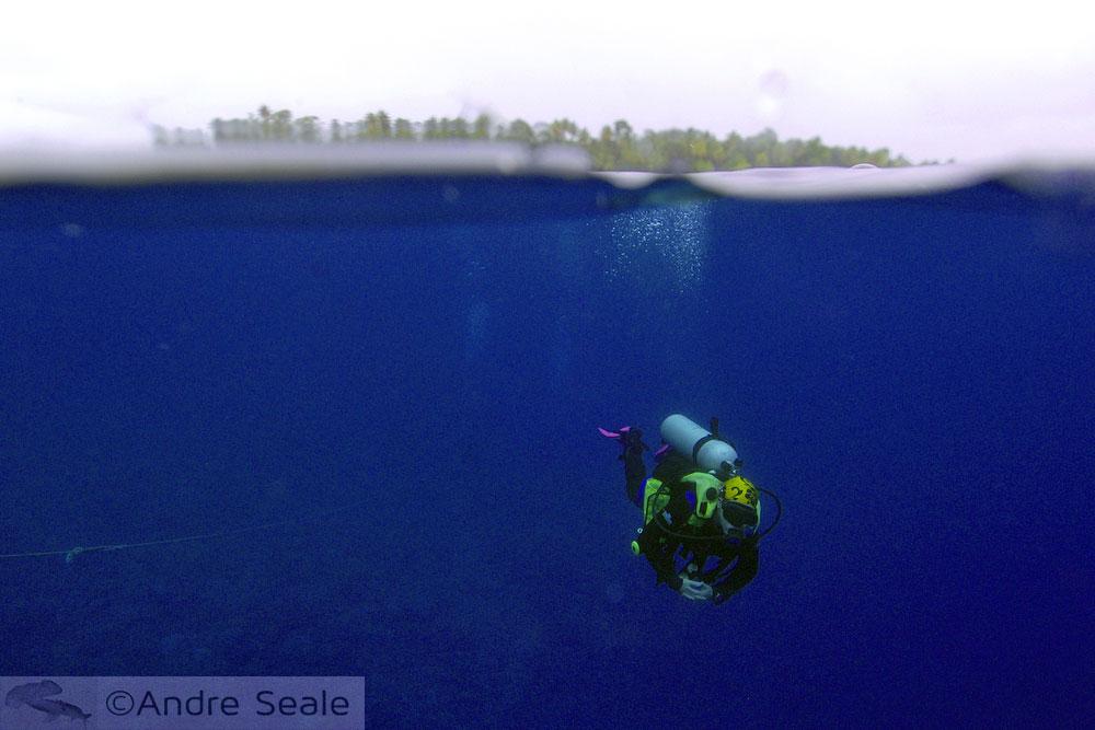 Final de mergulho