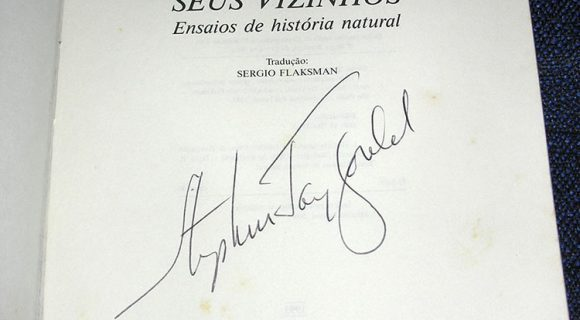 Gould Maravilhoso