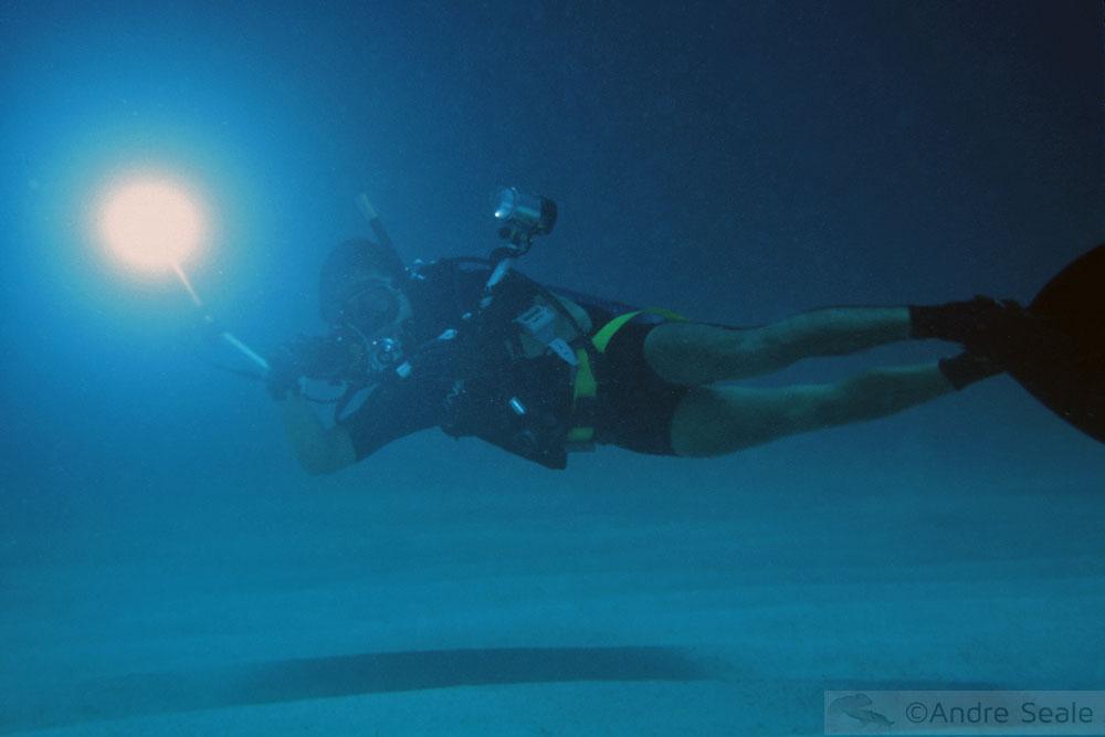 Fotógrafo subaquático - dia internacional da fotografia