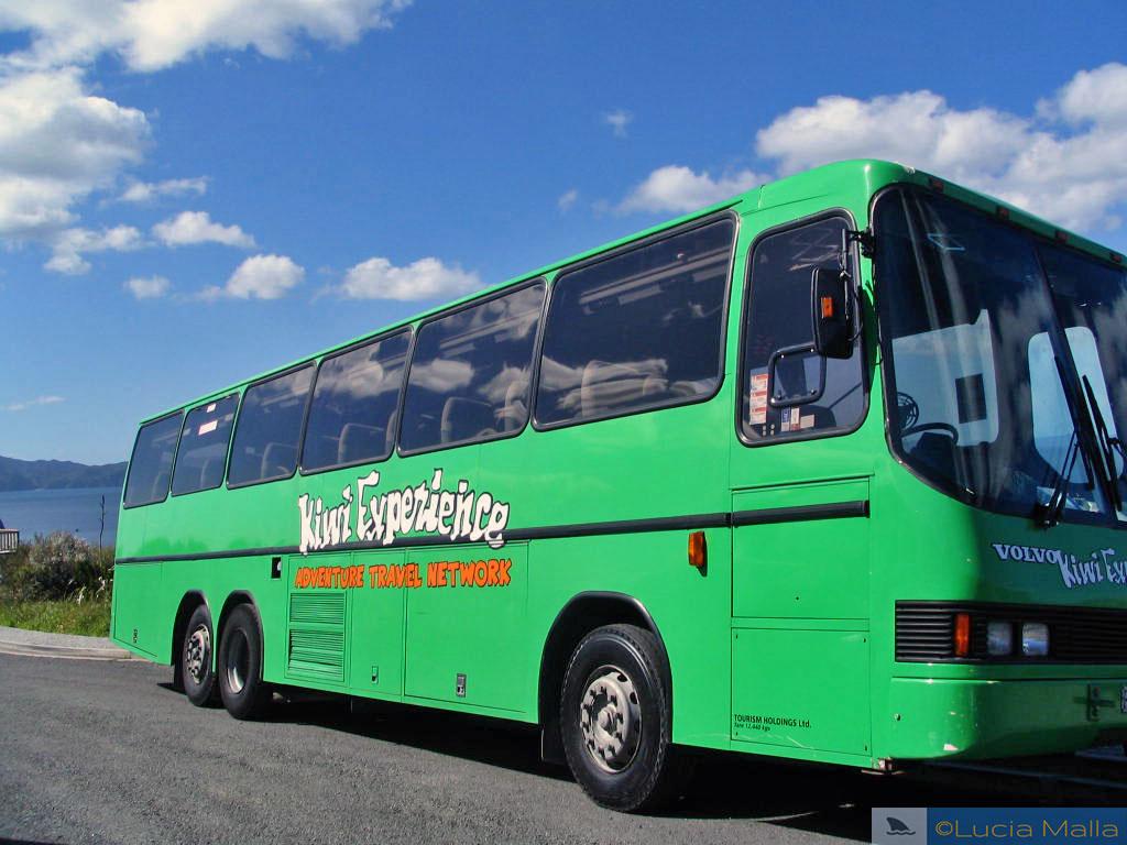 Ônibus da Kiwi Experience - Nova Zelândia - Entrevista Malla