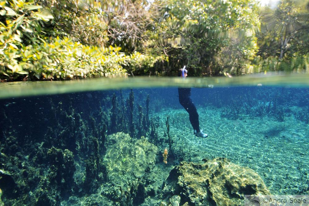 Rio da Prata - flutuação - ecoturismo