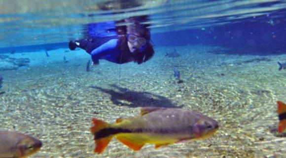 Sexta Sub: flutuação no Rio da Prata