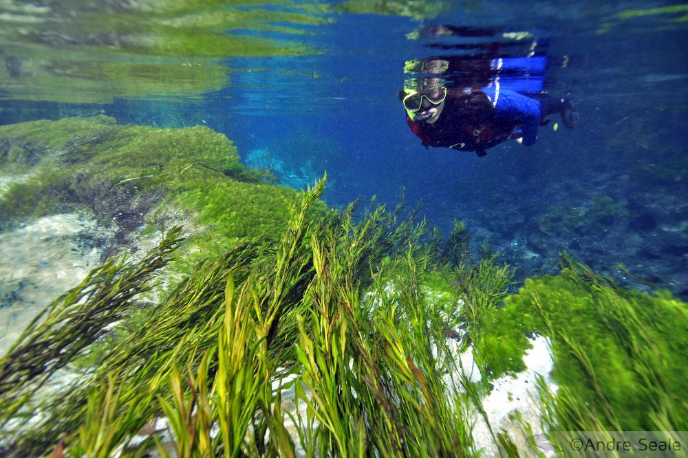 Flutuação no Rio Sucuri - Bonito - MS