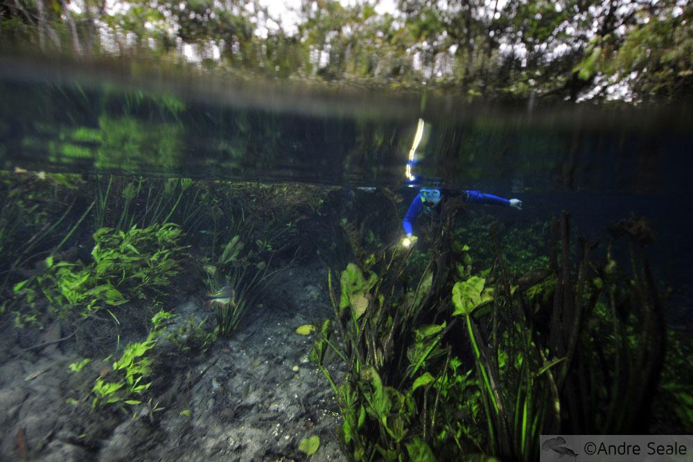 flutuação no Aquário Natural - Bonito - MS