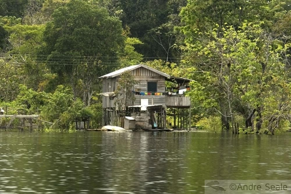 Casa ribeirinha - rio Solimões