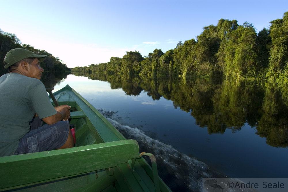Morador da Amazônia em barco pelo rio - flor de vitória-régia