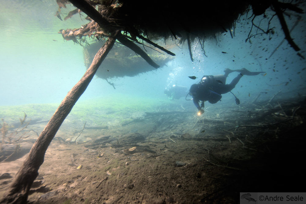 Mergulho autônomo no rio da Prata - Bonito - MS