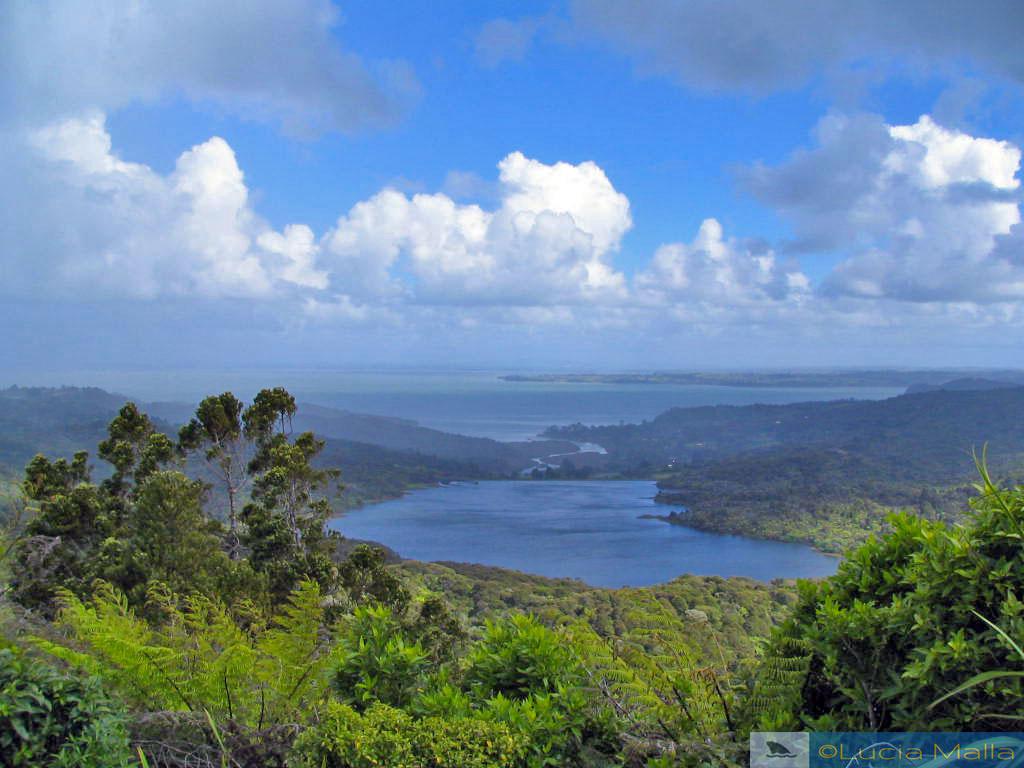 Vencedores em turismo sustentável - Trilha de Arataki - Nova Zelândia