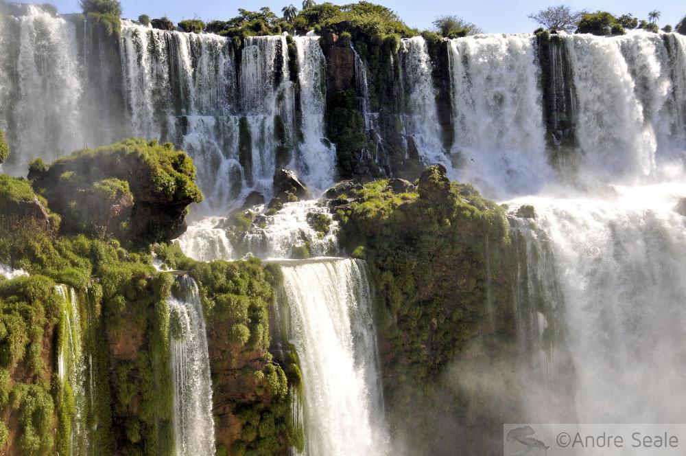 dia mundial da água - Foz do Iguaçu