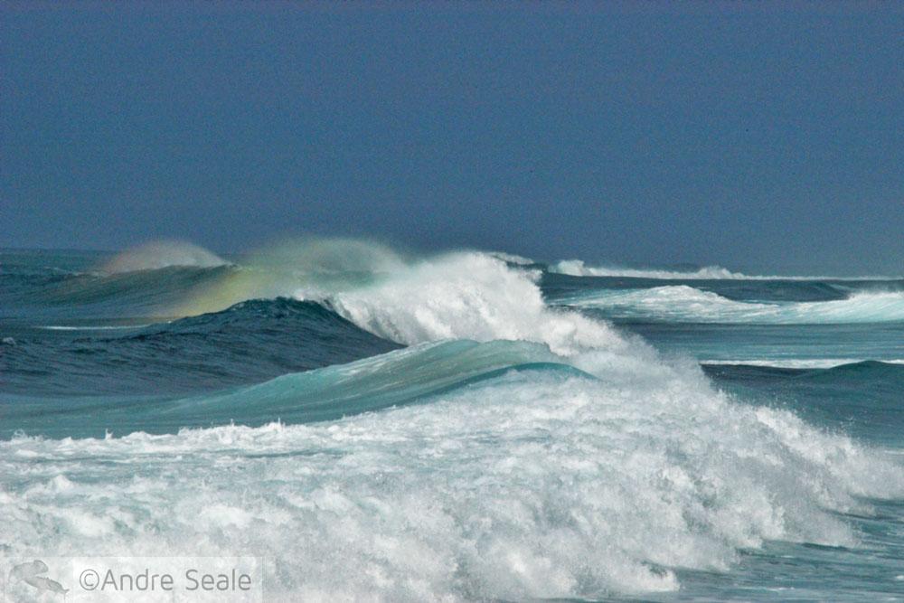 Melhores praias do Havaí - Ehukai ou Pipeline