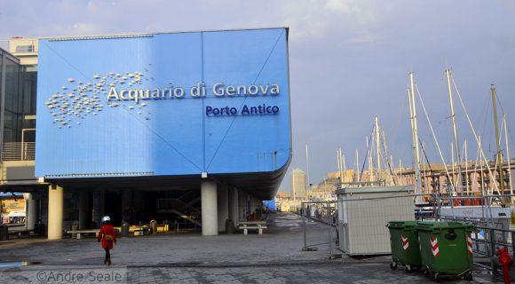 Um passeio pelo Aquário de Gênova