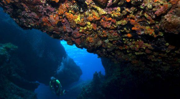 Sexta Sub: mergulho em Pedras Secas