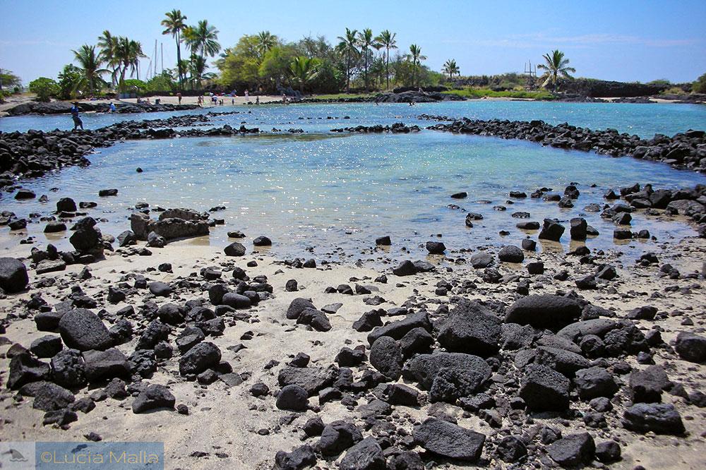 Fishpond - loko 'ia - Big Island - Havaí