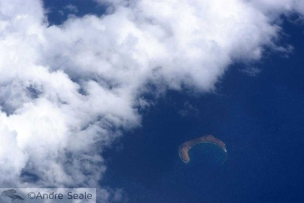 Molokini aéreo - Maui