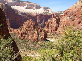 Parques nacionais americanos: Zion