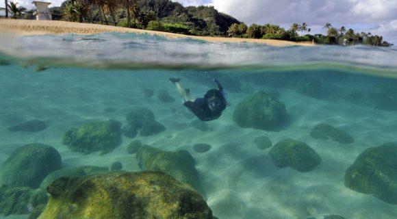 Sexta Sub: snorkel em Sunset Beach