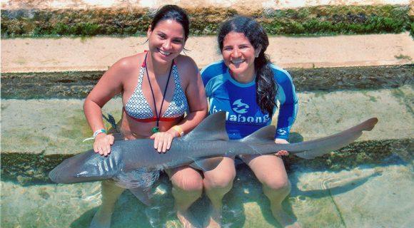 Blogueiros em Cancún