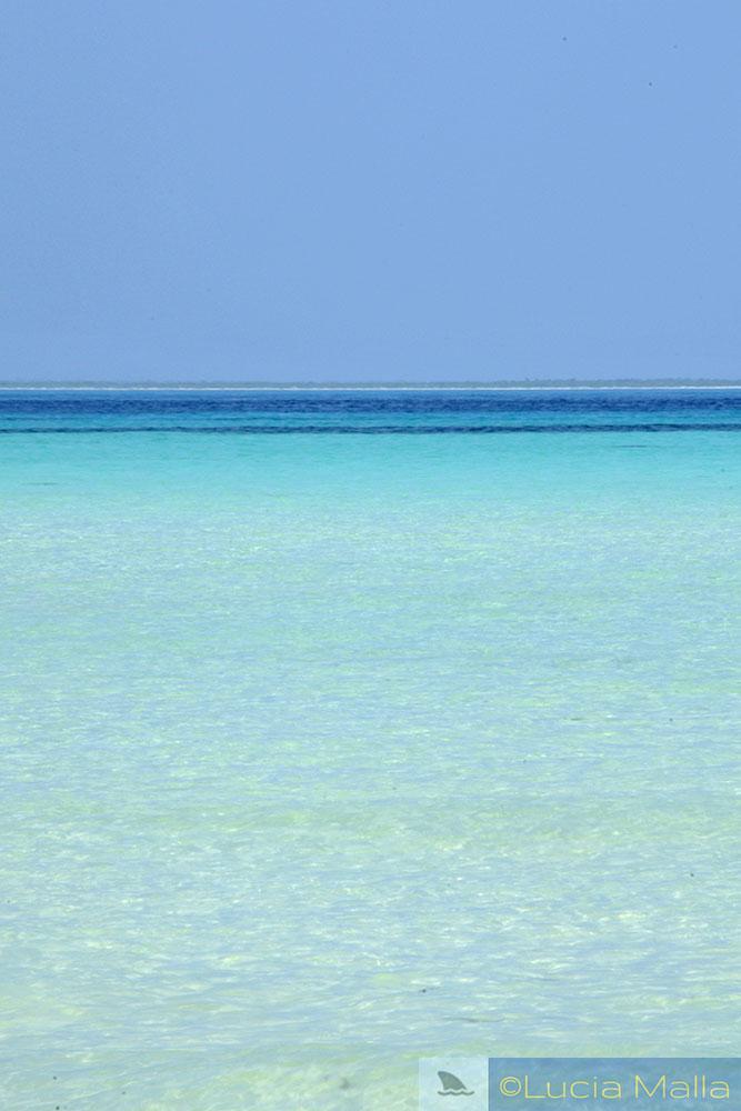 Isla Mujeres - Cancún - México