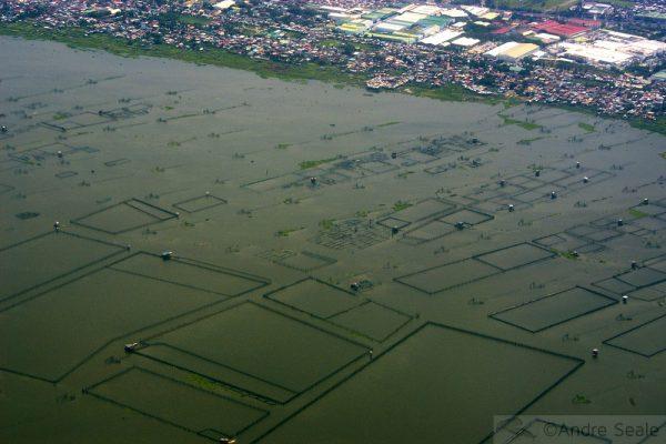 Fazendas marinhas