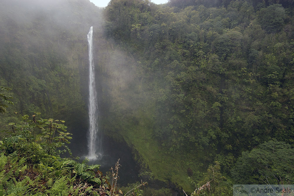 4 dias na Big Island - Akaka Falls