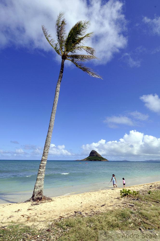 4 dias em Oahu, Havaí - Chinaman's Hat