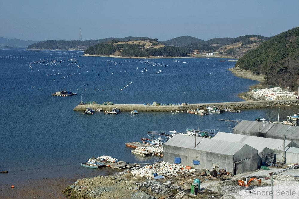 Fazendas marinhas - Roteiro em Geoje - Coréia do Sul