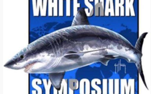 Notas sobre o Simpósio Internacional de Tubarões Brancos